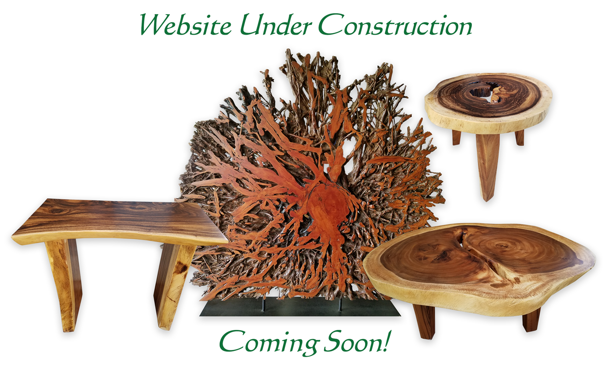 Website Under Construction. Coming Soon!